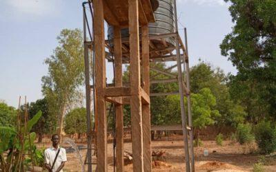 Gartenbauprojekt in Burkina Faso wächst und trägt Früchte